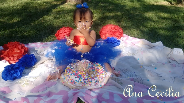 Smash the Cake 1